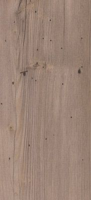 81031 Authentic Plank Ferne