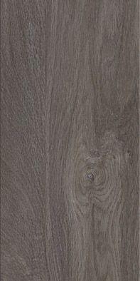70597 English Oak Epping Oak
