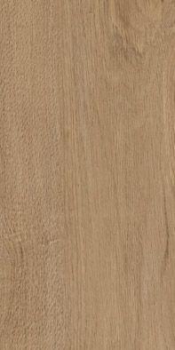 70599 English Oak Lewes Oak