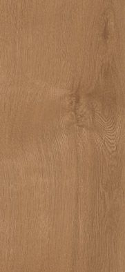 41822 Broad Leaf Pure Sycamore