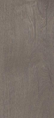 41828 Broad Leaf Grey Sycamore